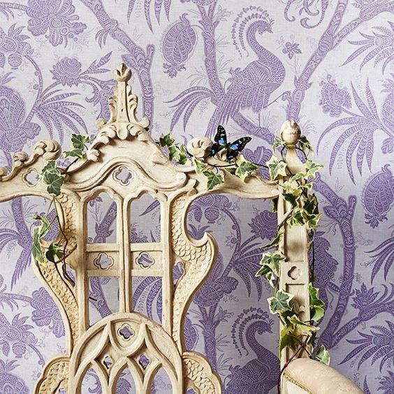 Scalamdre, Wallpaper, Lavender